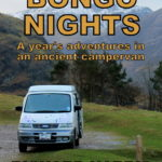 Bongo Nights by Richard Harris